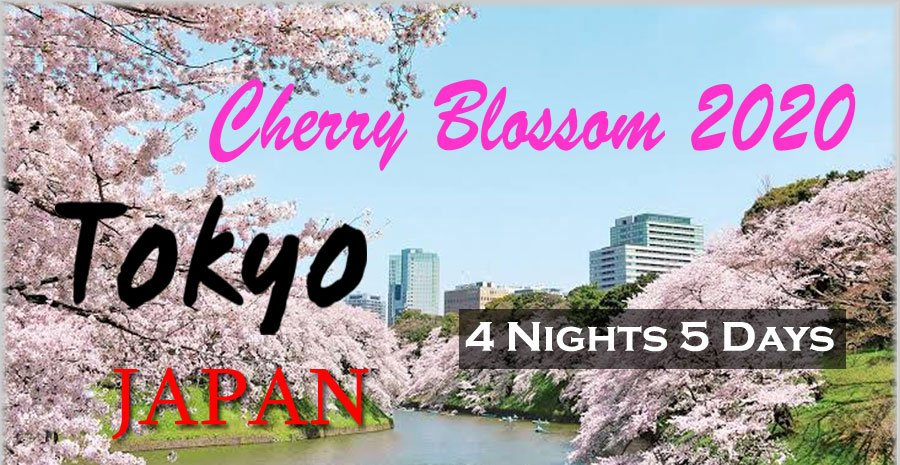 Cherry Bossom 2020 5D4N in TOKYO
