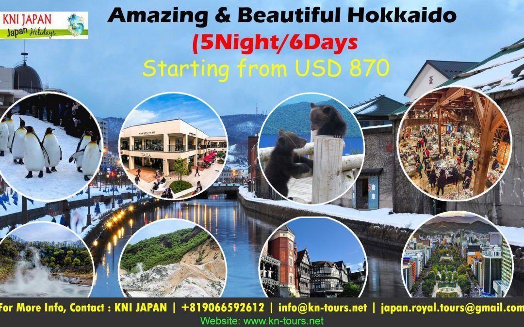 Amazing & Beautiful Hokkaido (5Night/6Days)